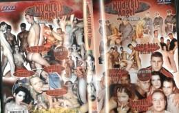 Erotické DVD Wild Bi Angel 12