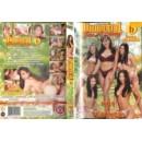 Erotické DVD Whoriental Sex Academy 6