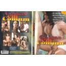 Erotické DVD Coisas em Comum
